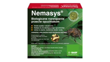 BOX-Nemasys-Vine-Weevil-6M